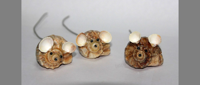 Поделки с морских ракушек фото 7