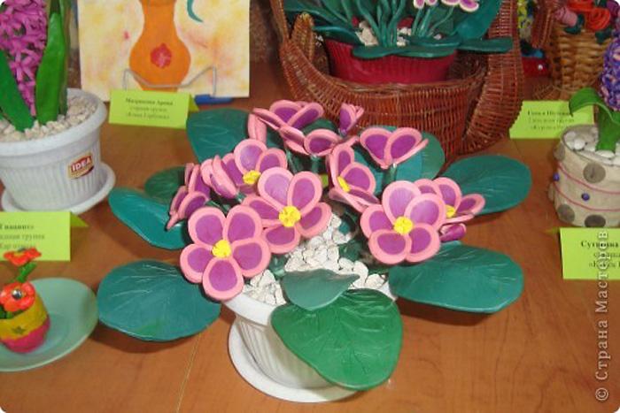 zvety-v-gorshkah-3 Букет цветов из пластилина своими руками для детей 5-6 лет