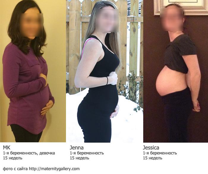 15 недель фото беременности