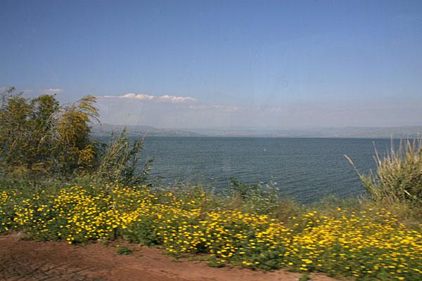 Тивериадское (Генисаретское) озеро