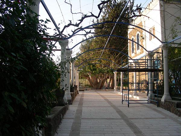 Сад монастыря Двенадцати Апостолов