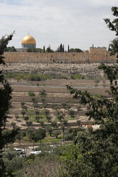 Вид на стены Иерусалима и Золотые Ворота из Гефсимании